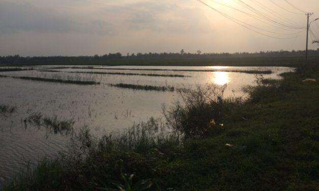 2017/12/08, Hoï An, 13km