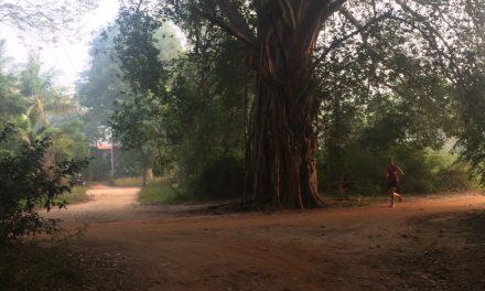 2018/01/25, Auroville, 11km